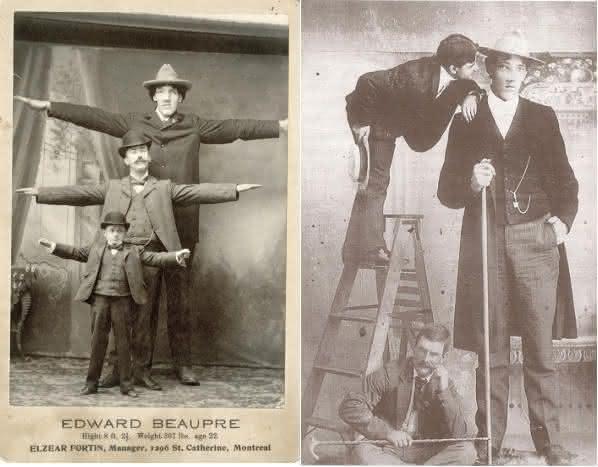 edward beaupre entre as pessoas mais altas de todos os tempos