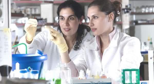 israel um dos paises com mais formados na universidades