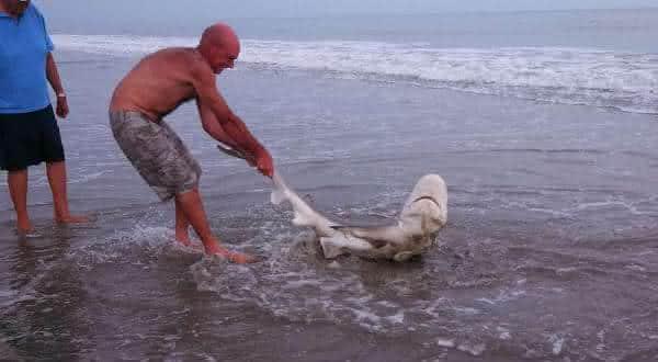 Horry County  entre as praias mais perigosas do mundo