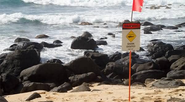 Northern Shore on Oahu entre as praias mais perigosas do mundo