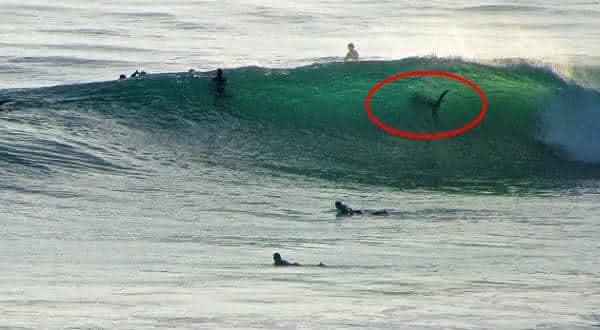 Solana Beach entre as praias mais perigosas do mundo