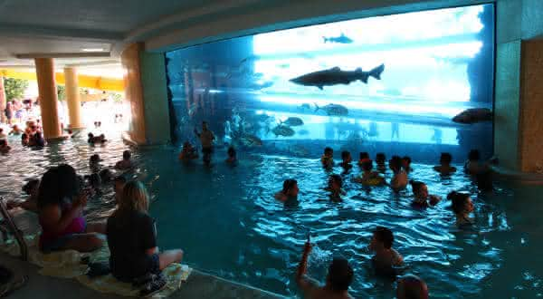 The Golden Nugget entre as piscinas mais criativas do mundo