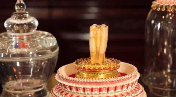 dente de buda entre as relíquias mais misteriosas do mundo