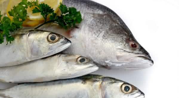 gravida pode comer peixe entre os mitos mais comuns na gravidez