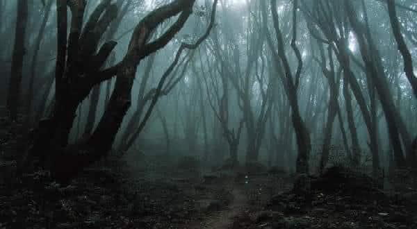 Aokigahara entre os lugares mais assustadores do mundo