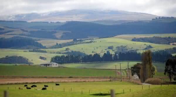 Clifton Hills entre as maiores fazendas do mundo