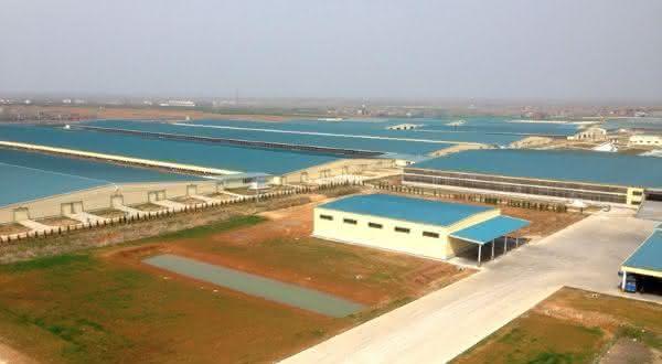 Mudanjiang City Mega Farm entre as maiores fazendas do mundo