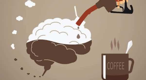 impacto cafeina entre os fatos interessantes sobre a cafeina