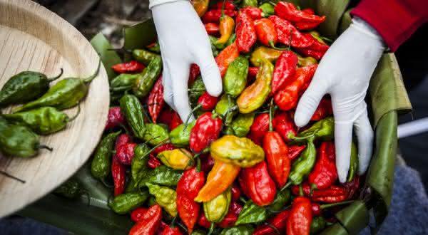 Ghost Pepper entre as pimentas mais fortes do mundo