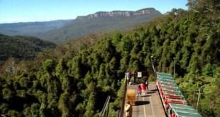 australia entre os países com maior área de floresta do mundo