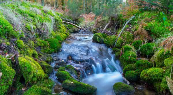 natureza perfeita entre as razoes para acreditar em Deus