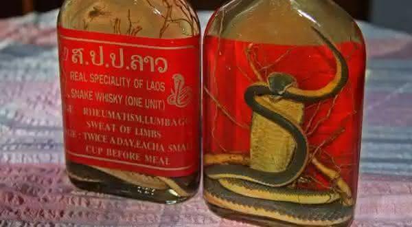Snake Whiskey entre as bebidas mais bizarras do mundo