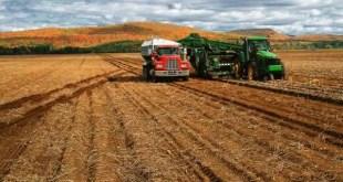 canada entre os maiores exportadores de alimentos do mundo