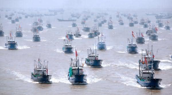 holanda entre os maiores exportadores de peixes do mundo