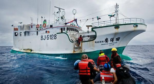 taiwan entre os maiores exportadores de peixes do mundo