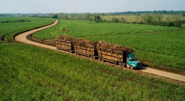 Guatemala entre os maiores exportadores de açúcar do mundo