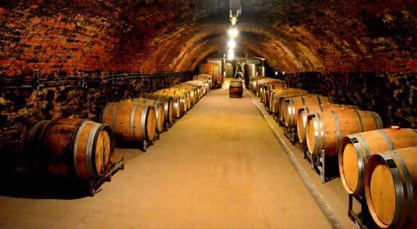alemanha entre os maiores exportadores de vinhos do mundo