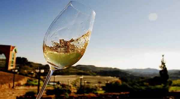 portugal entre os maiores exportadores de vinhos do mundo