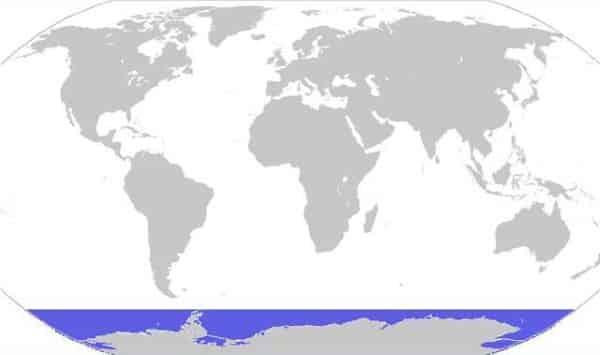 oceano antartico entre os maiores oceanos do mundo