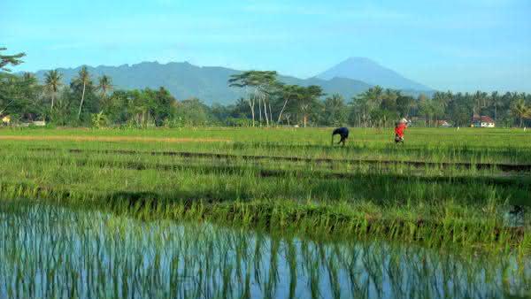 indonesia entre os paises com mais agua potavel no mundo