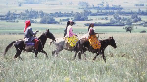Ethiopia entre os paises com mais cavalos no mundo