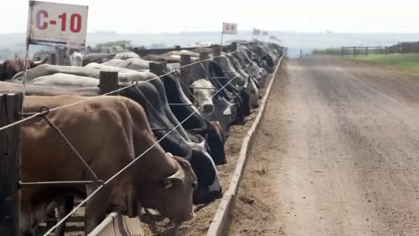 jbs entre as maiores fazendas do Brasil