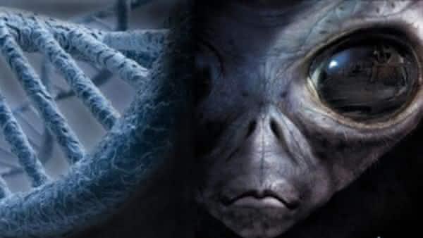 dna alienigena entre as teorias aterrorizantes sobre a existencia humana