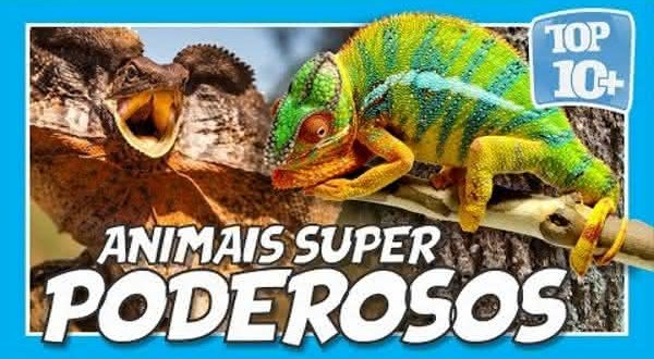 Top 10 animais com superpoderes
