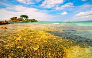Bahía de samaná Mejores Lugares para visitar en República Dominicana