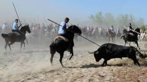 10 Fiestas más crueles en las que son maltratados animales