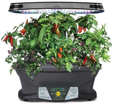 Best Indoor Herb Garden Kits