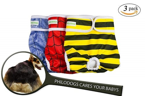 Top 10 Best Dog Diapers in 2021 Reviews