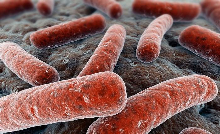 como se cura la tuberculosis