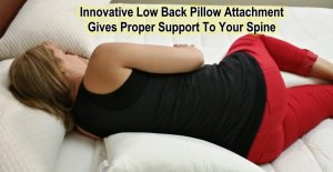 9. The Schmoozi Maternity Pillow