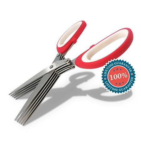 6. Home & Family Bliss Culinary Herb Scissors
