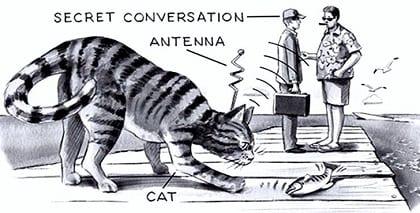Animal Intelligence Operatives