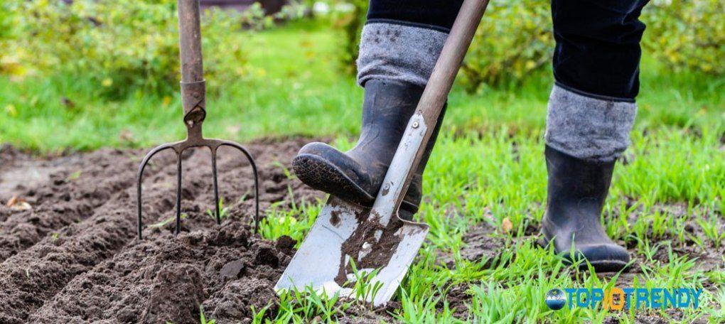 Prepare-The-Garden-Carefully