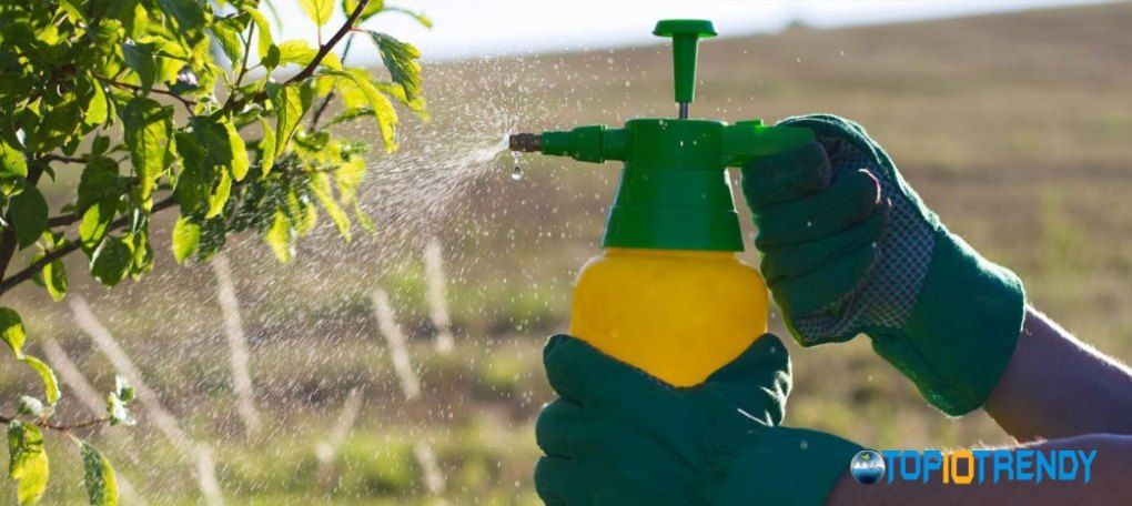 Use-recommended-herbicides-and-pesticides