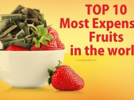 Top Ten World Most Expensive Fruits Japan Expensive Fruits
