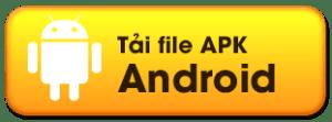 apk 1 300x111 1
