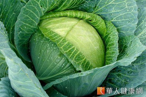 秒殺脂肪!3款甘藍果汁助瘦身   華人健康網