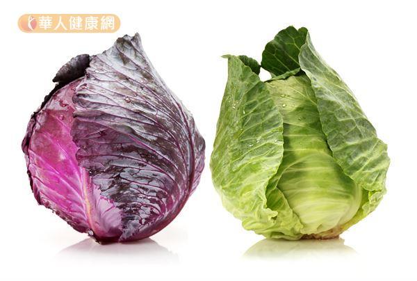 給你滿滿的花青素!吃紫甘藍抗氧化兼抗感冒 | 華人健康網