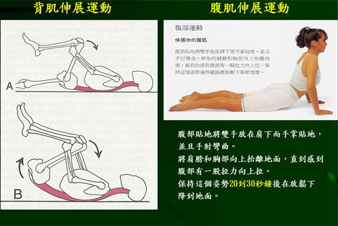 趕走下背痛!抬頭挺胸縮小腹4貼牆-華人健康網-良醫健康網