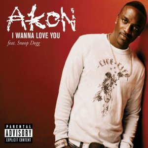025 Akon I Wanna love you