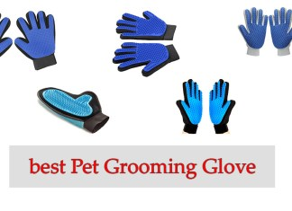 best Pet Grooming Glove Review