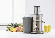Best Breville Juice Extractor