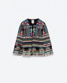 embroidered jacket zara
