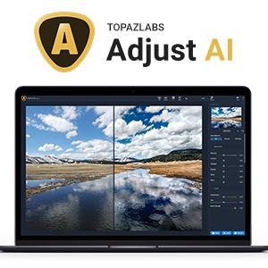 Adjust AI
