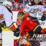 Flames Vs Ducks 2017 Western Conference Round 1 Series