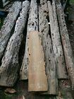 NOT DRIFTWOOD! 7+ Years Selling REAL Sinker Cypress on eBay! Heavy! Kiln Dried!